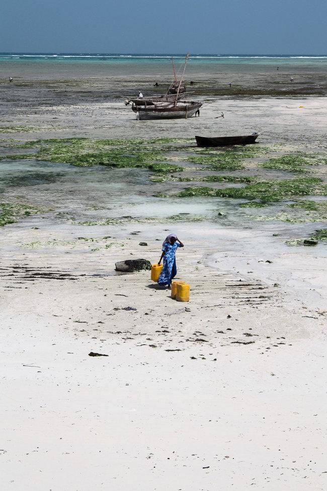Nungwi Beach Zanzibar 1
