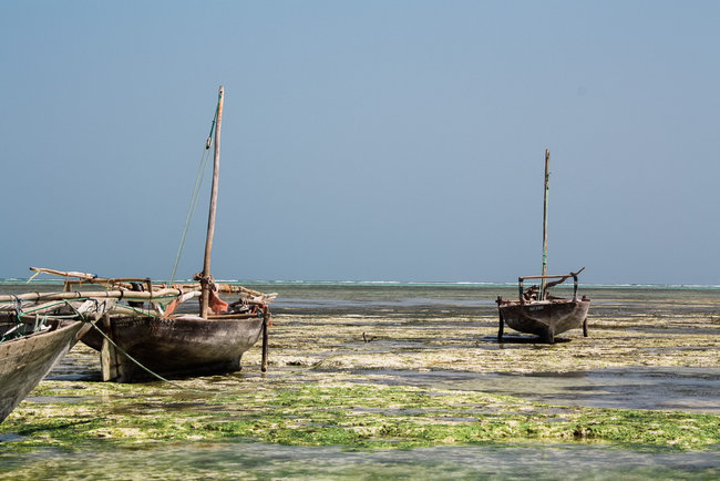 Nungwi Beach Zanzibar 21