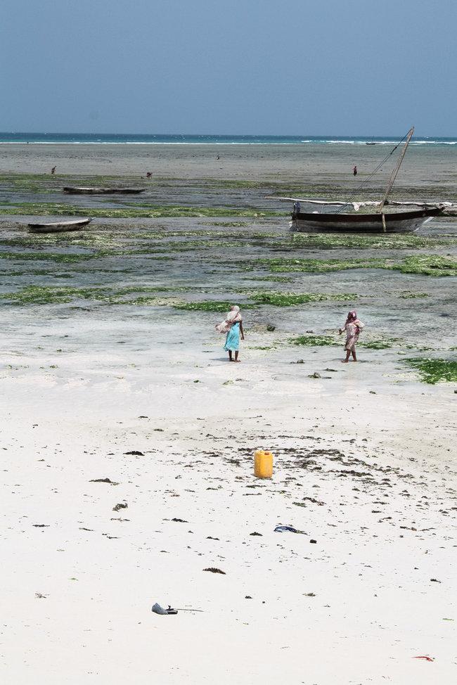Nungwi Beach Zanzibar 3