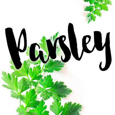 How to Use Parsley in Cooking